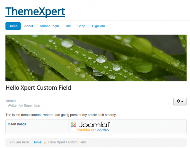 adding_custom_field_in_joomla
