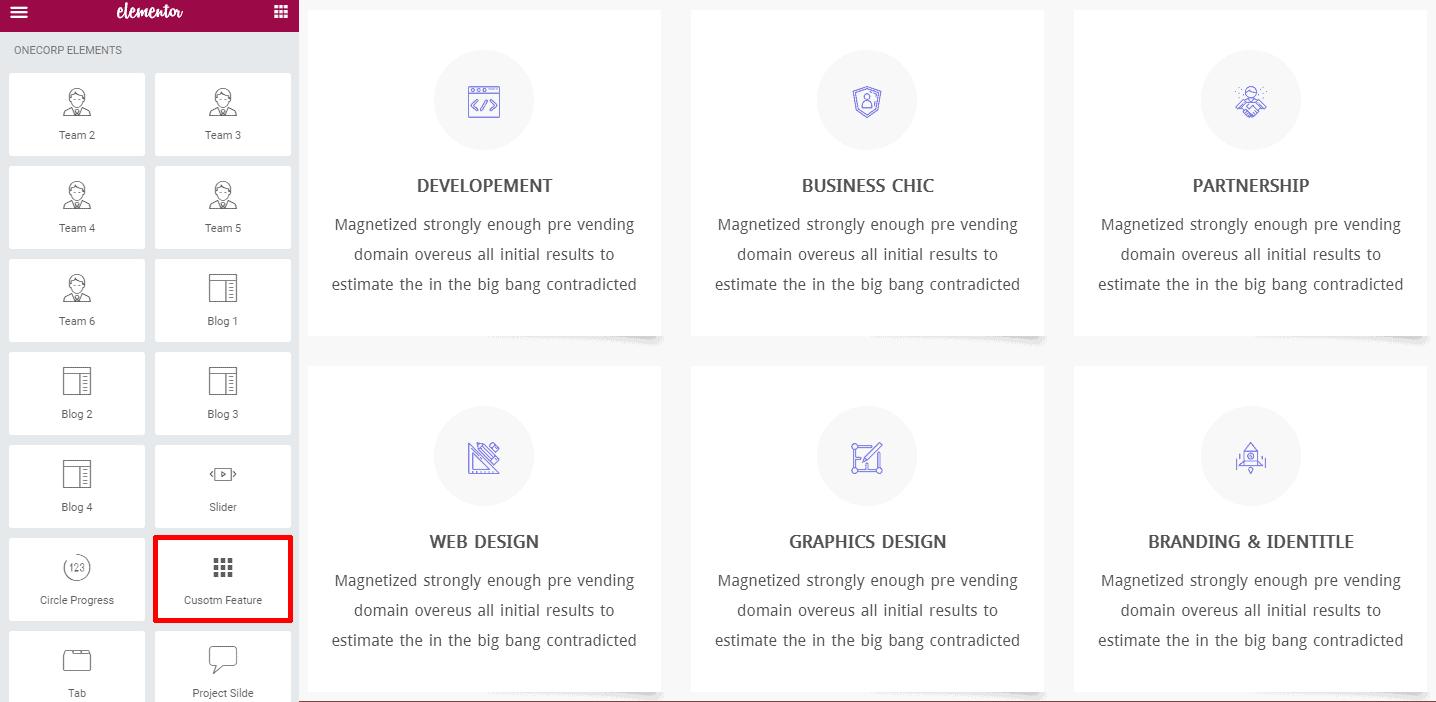 Custom Feature